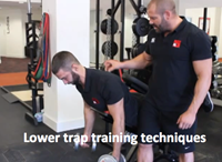 Lower trap training techniques