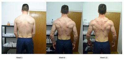 Tom_Hill_12_weeks_back2